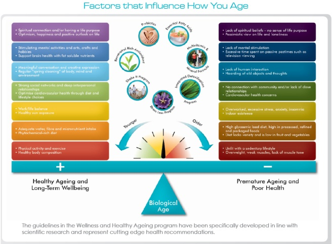 factors-how-you-age-diagram